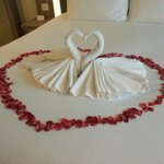 Honeymoon surprise from the hotel