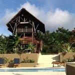 Jungle Lodge and pool in Jungle Village.
