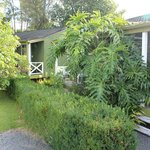 Bushlike surrounding for quiet and privacy
