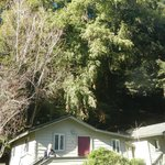 Cottage 6, backing onto hill and woods