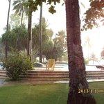 Dos Palmas Island Resort