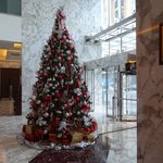 Beautiful Christmas trees in different areas of hotel