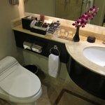 Club room toilet
