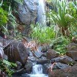 The waterfall near Valle de Mai