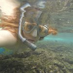 Snorkeling in the bay