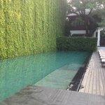 serene pool