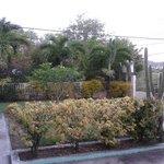 VILLA: Vista sul giadino