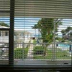Вид из окна гостинной