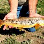 Fishing at Double Diamond X Ranch