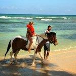 Camp horse-back ride  - Sunrise Beach