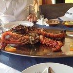 Lobster gegrillt