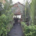 Couloir vers la terrasse pour déj