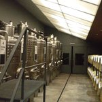 Produção vinho San Felippe