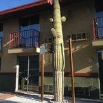 Saguaro vor dem Hotel
