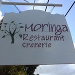Moringa sign