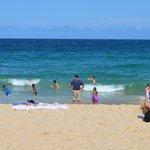 a dip in coogee beach