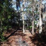 Rocky Bayou Trail