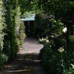 Entrance down lush winding road