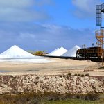 Salt is the 2nd largest source of income (after tourism) in Bonaire