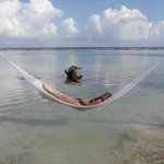 Brooke chilling in the hammock at YaYa Beach in Costa Maya, Mexico