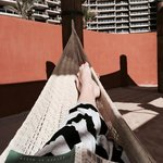 Spent hours reading in the hammocks