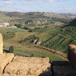 ジュノーネ神殿 (ヘラ神殿)・・・周りの風景