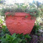 Expressive planter!