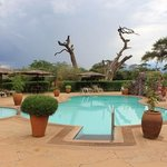 pool area at sentrim amboseli