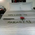 it was really a paradise ... my room