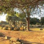 Temple of Hercules ・・・積みおげられた遺跡石