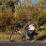 Near Turangi, lake Taupo