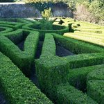 A maze in the garden.