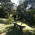 Common Gardens - Tokatea /Kaipawa Villa
