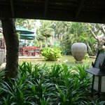 Wonderful garden with a lot of tropic plants