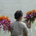 Orchids to decorate a banquet meal (boat-dinner)