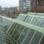 Крыша оранжереи