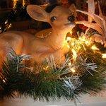 Decorazioni natalizie al Colombo di Novellara (RE).