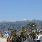 Mount Teda