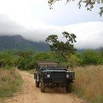Rahmen-Programm Game-Drive: In einem offenen Safari-Fahrzeug geht es durch das Moholoholo-Geländ