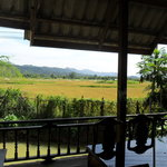 View across the rice paddies to the mountains