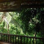 Aussicht in die Schlucht von einem Balkon