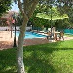 Every villa has private Pool/garden