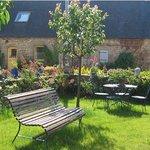 Le jardin de roses vu de la veranda petit dejeuner