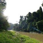 Muda River