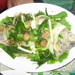 Red Snapper with onions and mushrooms
