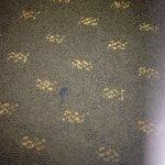 Gum in carpet