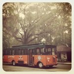 Purchasing your Old Town Trolley Tour tickets at the office supports the park.