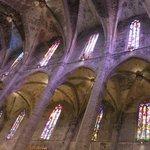 Cathedral (Le Seu)     Placa de l'Almudaina, Palma de Mallorca, Majorca, Spain