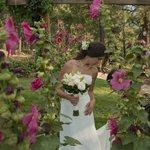 Beautiful Gardens for a Beautiful Bride
