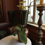 В холлах отеля повсеместно - живые цветы